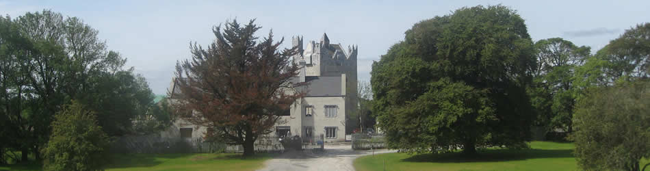 CGC_banner_castle_front_with_trees